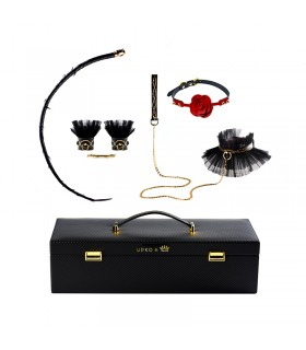 Королевский набор в чемодане Luxurious & Romantic Bondage Play Kit UPKO - No Taboo