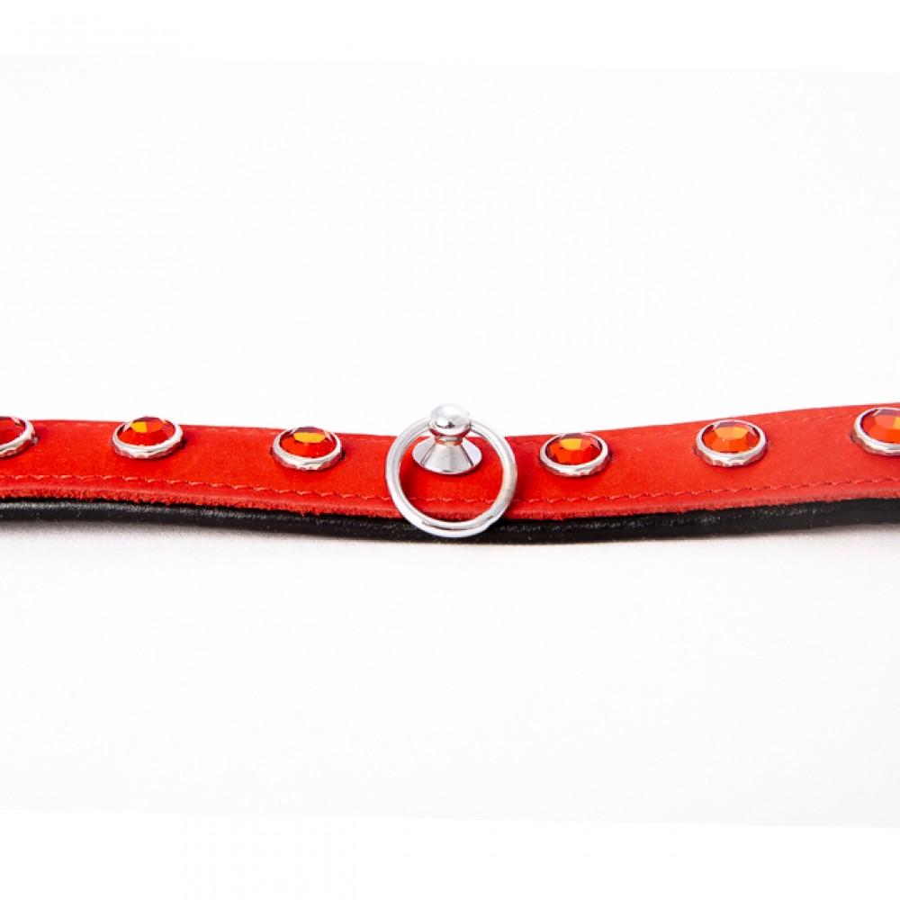 Ошейник кожаный красный с красными камнями Голландия ручная работа - No Taboo