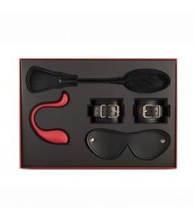 Лимитированный подарочный набор Svakom, с интерактивным виброяйцом вэбкам (webcam) и БДСМ набором (Lush) - No Taboo